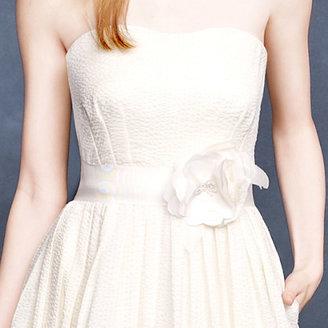 J.Crew Corliss gown