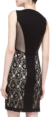 Laundry by Shelli Segal Mesh Lace Illusion Dress, Black/Nude