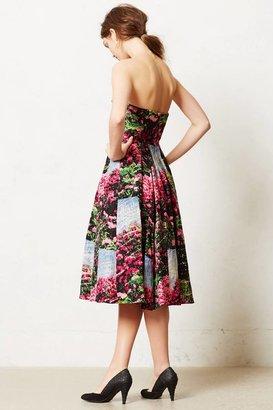 Tracy Reese Alpenrose Dress