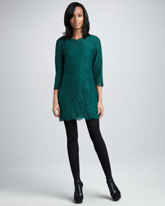 Joie Portia Lace Dress