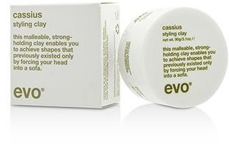 Evo Cassius Cushy Clay, 3.04 Ounce $32.95 thestylecure.com