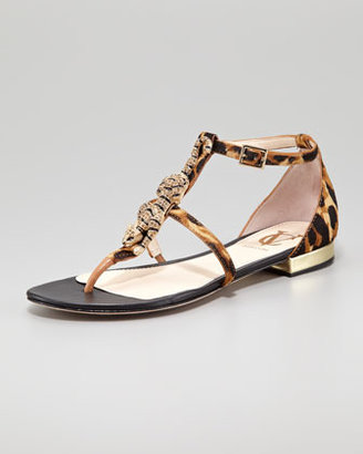VC Signature Daria Jaguar-Ornament Calf Hair Sandal