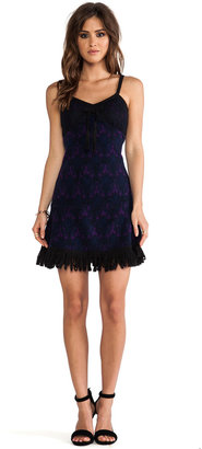 Anna Sui RUNWAY Stained Glass Knit Jacquard Dress