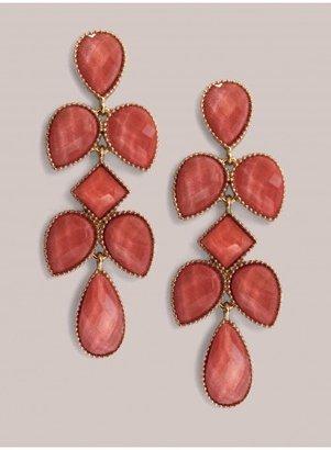 IGIGI Tammi Earrings in Coral
