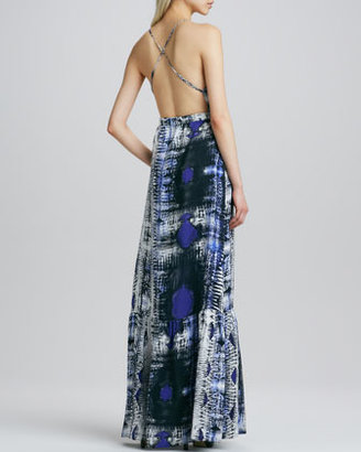 Parker Anna Printed Maxi Dress
