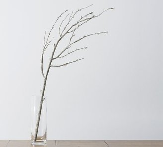Pottery Barn Frosted Branch