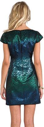 Nanette Lepore Cabaret Dress