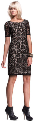 Isabella Oliver The Lace Shift Dress