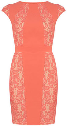 Dorothy Perkins Coral lace bonded dress