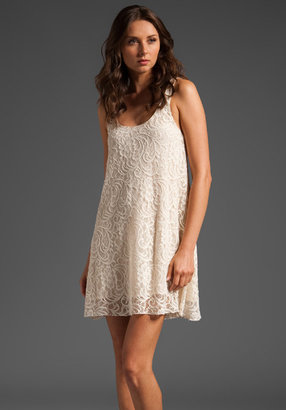 Dolce Vita Lace Dress