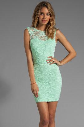 Donna Mizani Passion Lace Boat Neck Dress