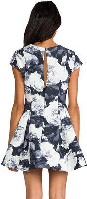 Keepsake Adventure Dress