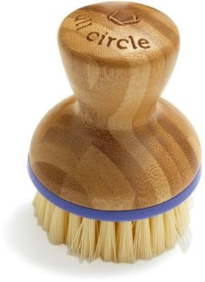 Sur La Table Full Circle Refill Scrub Brush, Purple
