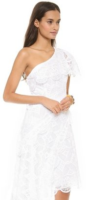 Catherine Malandrino Lace One Shoulder Gown