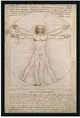 "Amanti art ""Proportions of the Human Figure - Vitruvian Man"" Framed Poster by Leonardo da Vinci"