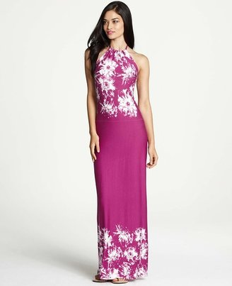 Ann Taylor Floral Persuasion Print Halter Maxi Dress