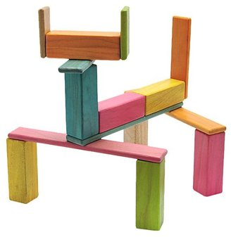 Green Baby Tegu Endeavor Set: Tegu Tints Magnetic Blocks (22 pcs)