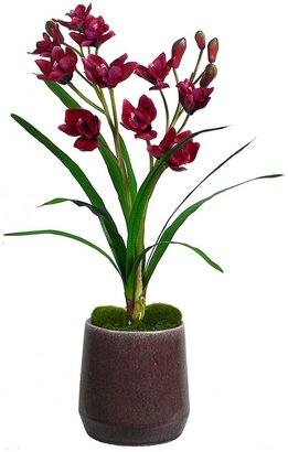 Laura Ashley lifestyles artificial orchid