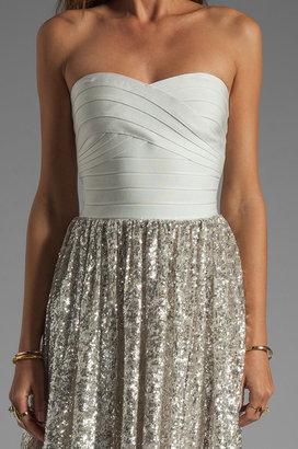 Erin Fetherston ERIN Antoinette Dress