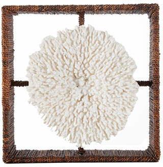 Palecek Plato Coral Shadowbox