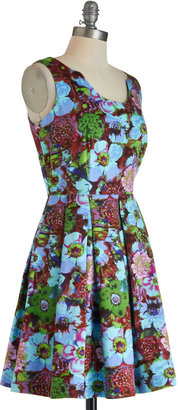 Louche Dreaming in Color Dress