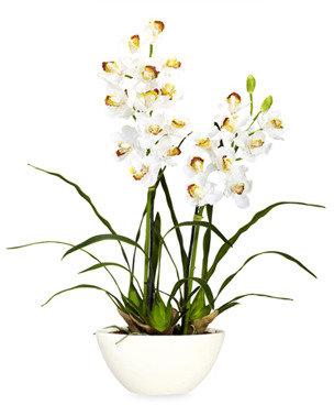 Bed Bath & Beyond Nearly Natural Cymbidium w/ White Vase Silk Flower Arrangement