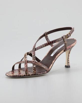 Manolo Blahnik Scarsomod Strappy Sandal