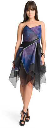 Christian Cota Hand Painted Organza Dress