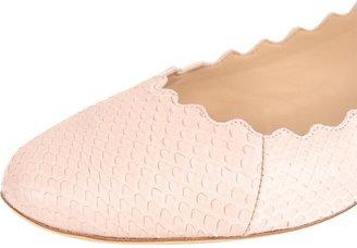 Chloé Scallop Ballet Flat