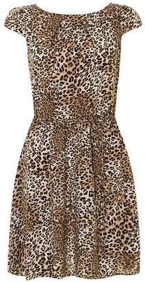 Dorothy Perkins Billie and Blossom Animal tuck neck dress