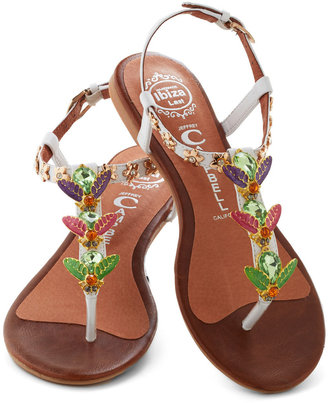 Jeffrey Campbell Who Could That Bee? Sandal