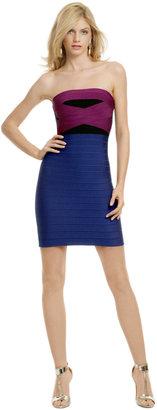 Herve Leger Whiplash of Color Dress
