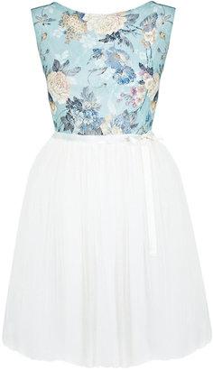 Miss Selfridge Floral print lace tutu dress