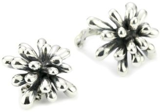 "Zina Sterling Silver ""Fireworks"" Earrings In Oxidized Sterling Silver"