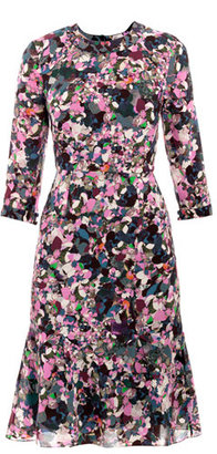 Erdem Darty park print dress
