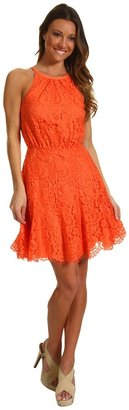 Juicy Couture Scallop Lace Dress (Sweet Clemintine) - Apparel