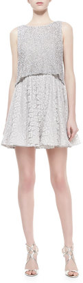 Alice + Olivia Hilta Beaded Combo Swing Dress