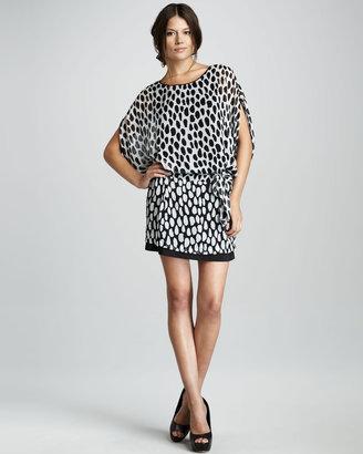 Diane von Furstenberg Robyn Dot-Print Chiffon Dress