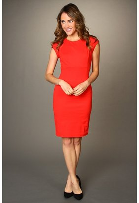 Ted Baker Josias Panel Detail Dress (Red) - Apparel