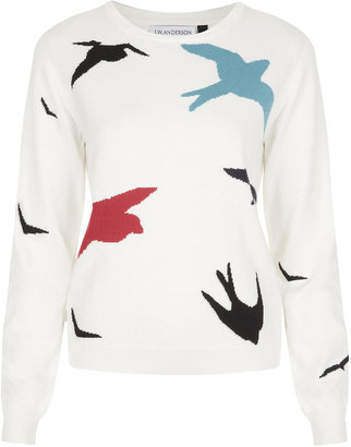 J.W.Anderson **Birds Sweater By for Topshop