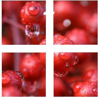 KitchenArt 4-pc. ''Red Rain'' Canvas Wall Art Set