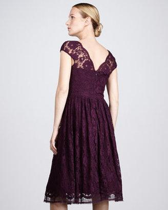 David Meister Signature Lace Cocktail Dress