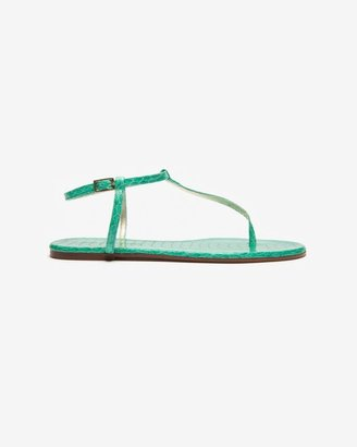 Avec Moderation Python Thong Sandal: Turquoise