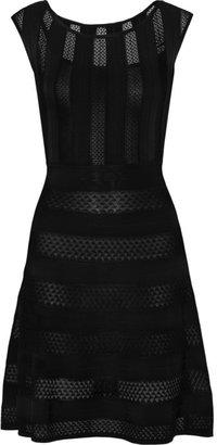 Issa Lace-paneled stretch-knit dress