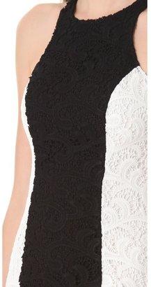 Joy Cioci Julia Lace Dress