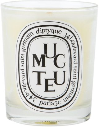 Diptyque bougie candle