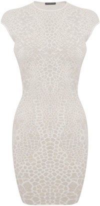 Alexander McQueen Ivory/Silver Dragonfly Wings Puckering Jacquard Mini-Dress