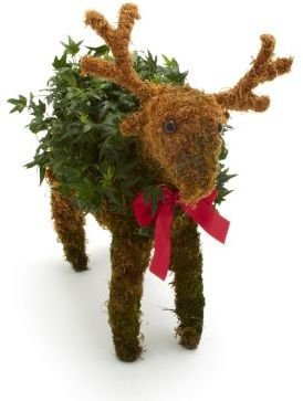 Sur La Table Small Reindeer Topiary