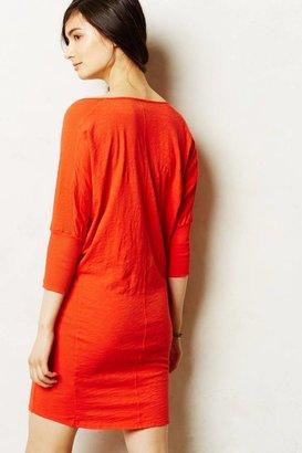 Graham & Spencer Velvet by Parkside Dress
