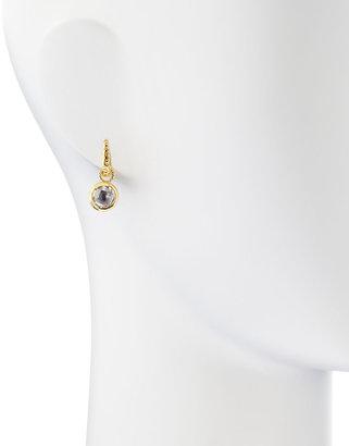Delatori Clear Crystal Dangle Earrings